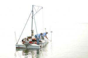 Dudley Biddlecomb and Peter Hedlund harvest oysters. (Pat Jarrett/The Virginia Folklife Program)